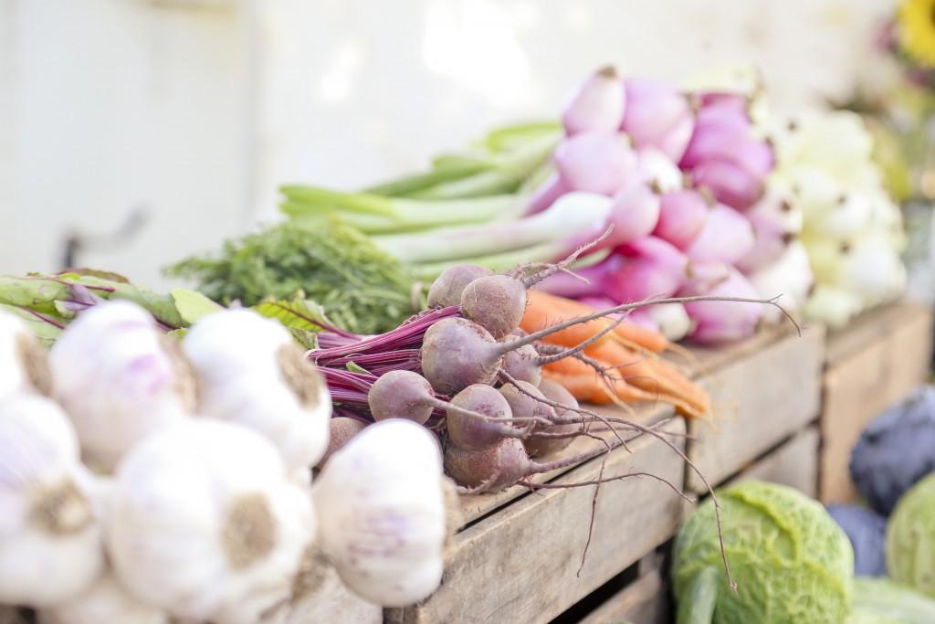 sustainable-ingredients